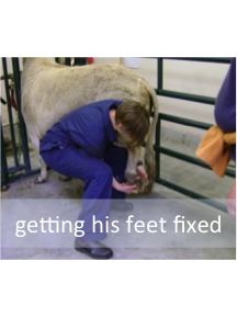 Getting his feet fixed