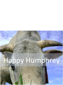 Happy Humphrey